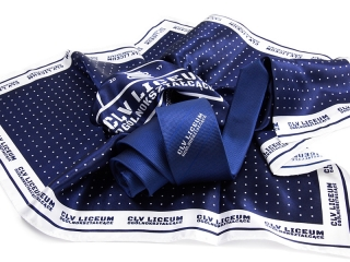 School scarf and tie with logo