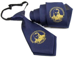 Tie and tie on elastic band with woven logo